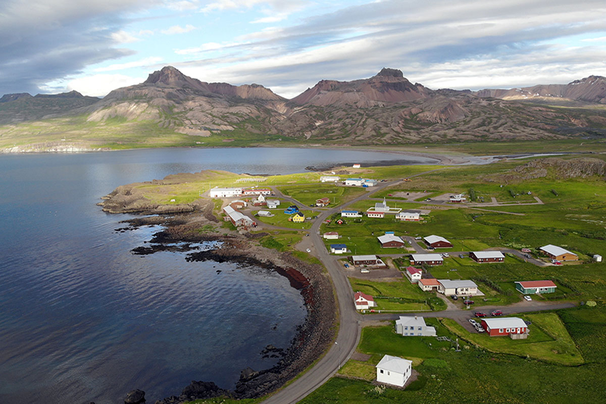 Olíuleki á Borgarfirði eystra